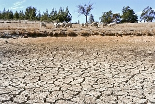 Drought: Issues, Information, Help